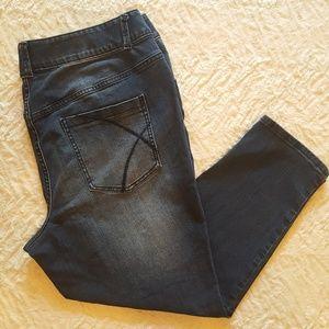 Lane Bryant T3 Skinny Petite Jeans